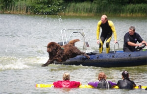 Beau doing a rescue at Corsham Court in aid of Guide Dogs for the Blind. Photo courtesy of Emma Horne.